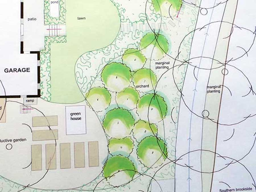Design Your Own Garden: Design Principles and Layout