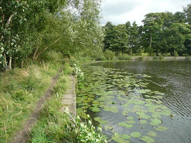 Breary Marsh Local Nature Reserve