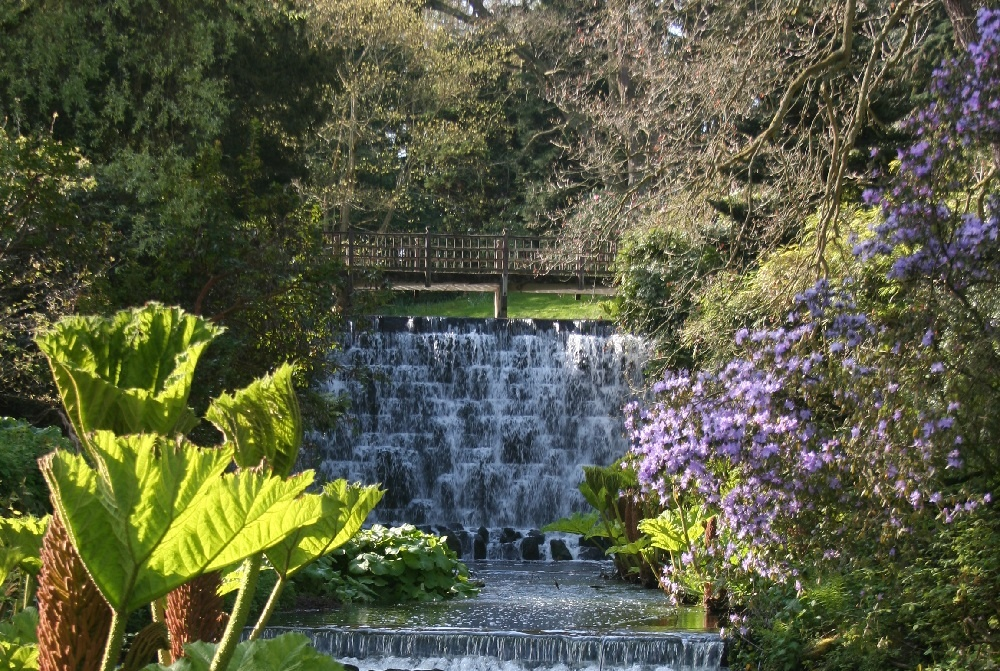 The waterfall in the Himalayan Gardens at Harewood House, Leeds - credit Harewood House Trust